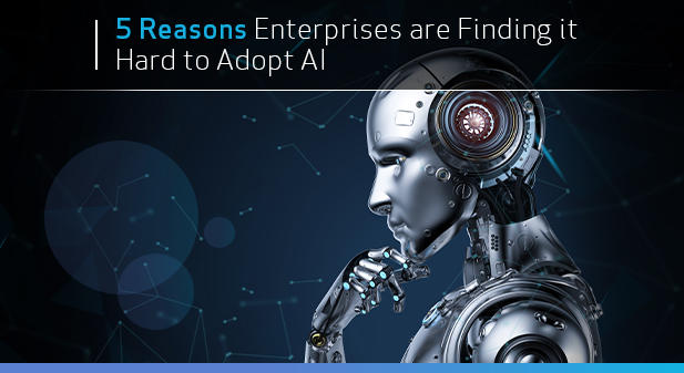 Why are companies and enterprises struggling to adopt AI? Leading AI expert explains.